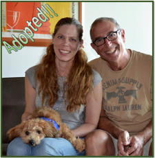 Razzle adopted newsletter