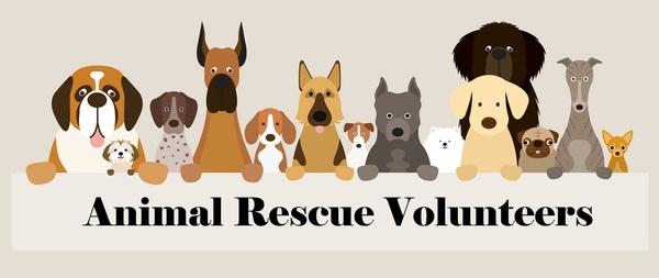group-of-dog-breeds-arv2 2